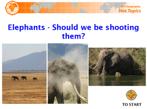 Elephants   Should We Be Shooting Them