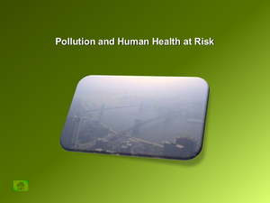 Pollution And Human Health At Risk