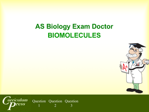 As 02 Biomolecules