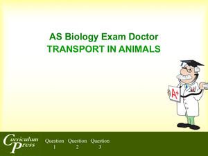 As 04 Transport In Animals