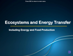 Al Bio Ecosystems And Energy Transfer