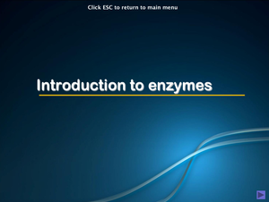 Al Bio Introduction To Enzymes