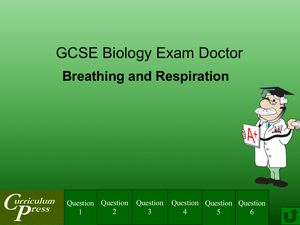 Gcse Biology Doctor Breathing And Respiration