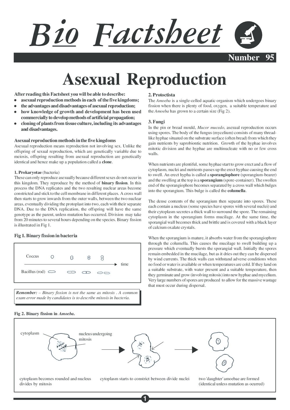 Five methods of asexual reproduction