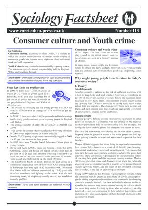 113 Youth Crime
