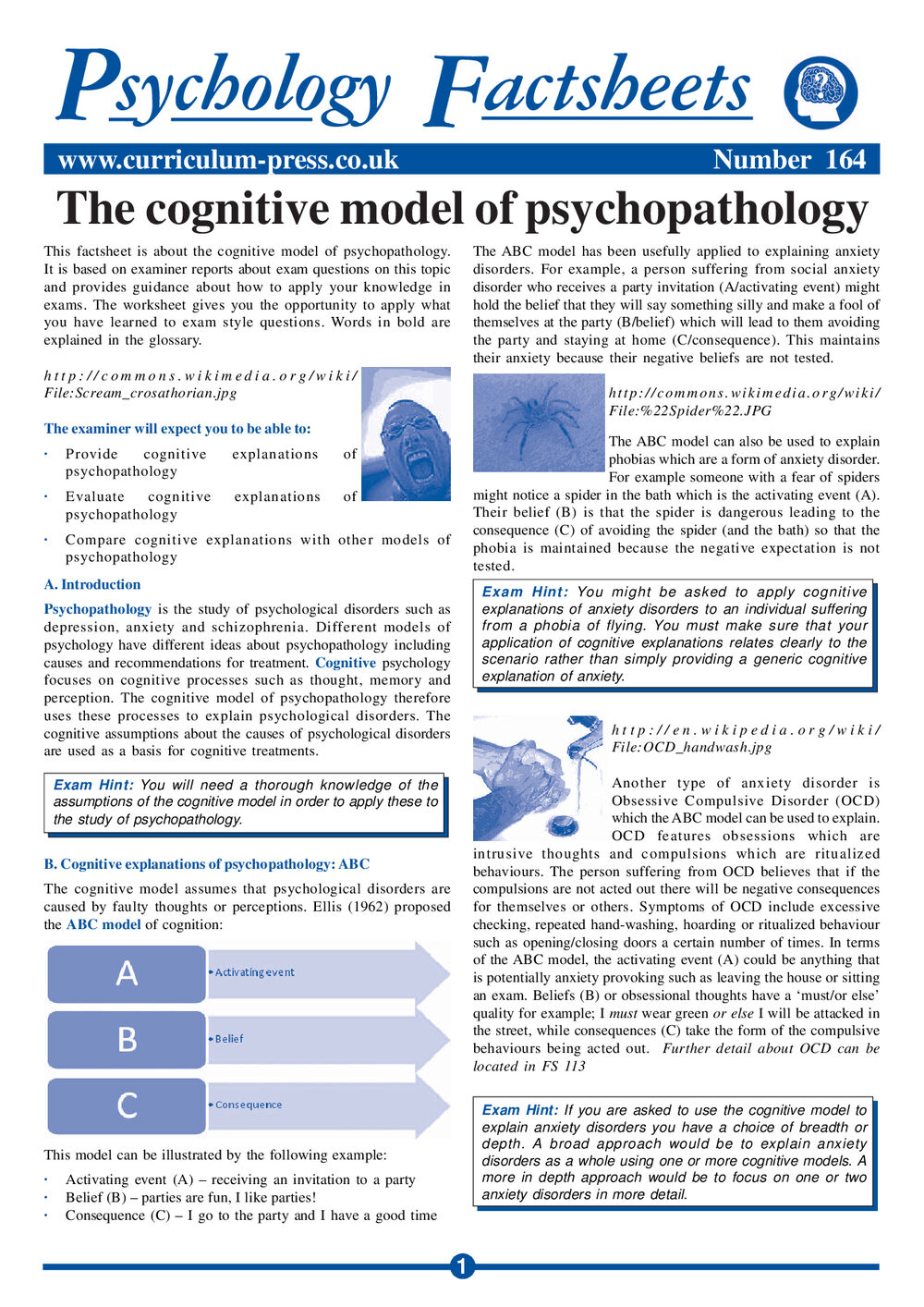 164 The Cognitive Model Of Psychopathology