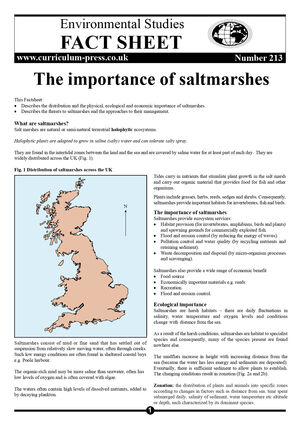 213 The Importance Of Saltmarshes