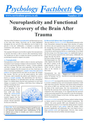 217 Neuroplasticity And Functional Recovery