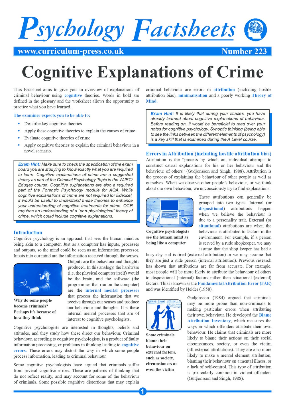 223 Cognitive Explanations Of Crime