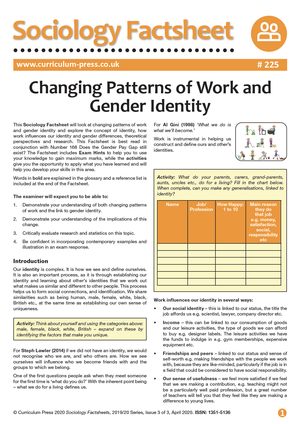 225 Changing Patterns of Work and Gender Identity