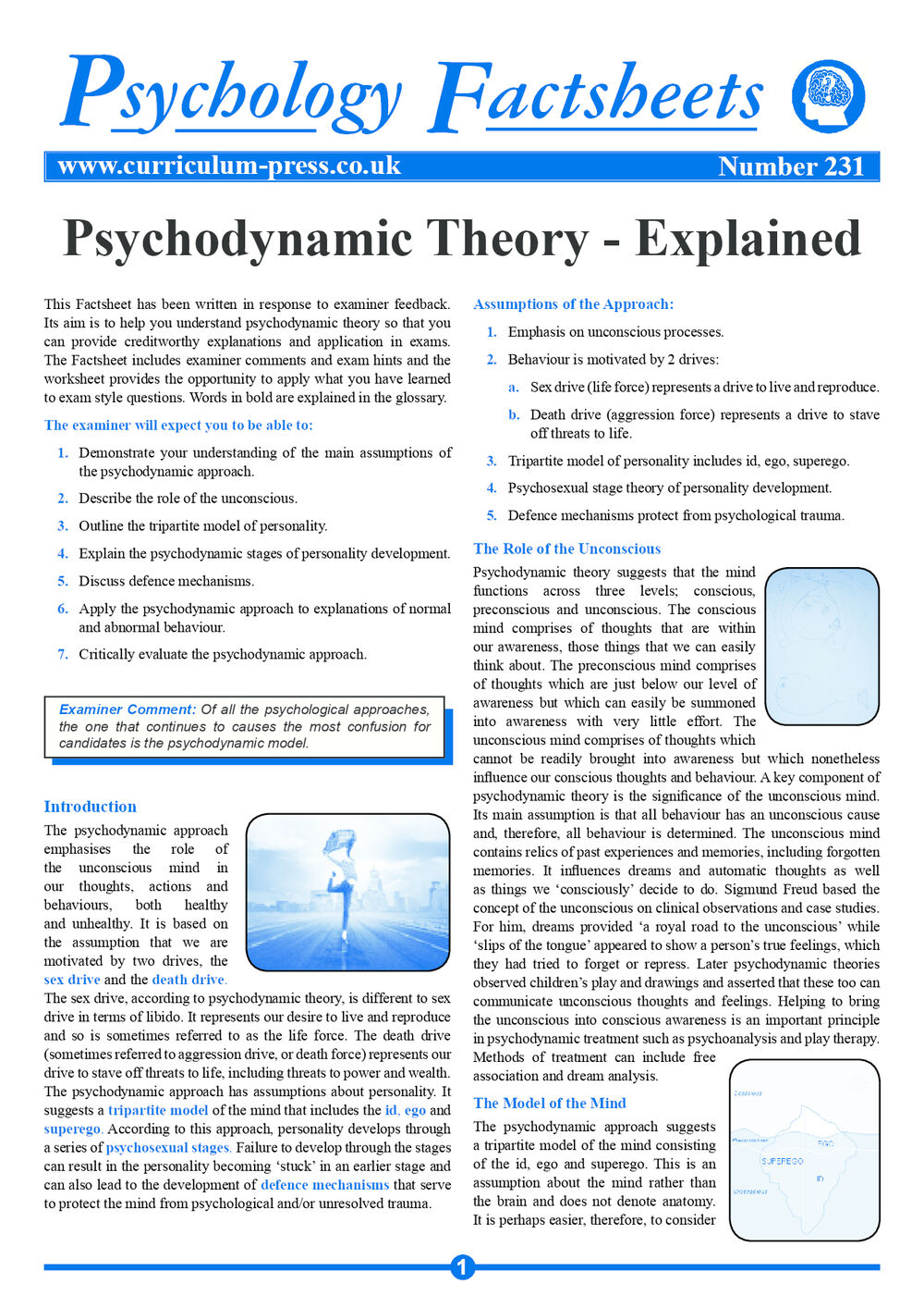 psychodynamic theory - explained