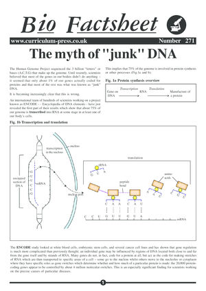 271 Myth Of Junk Dna