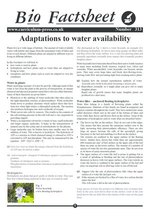 313 Adaptations To Water Availability