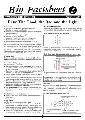 329 Fats   The Good, The Bad And The Ugly