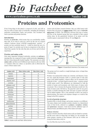 340 Proteins And Proteomics