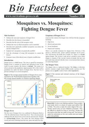353 Mosquitoes   Dengue Fever