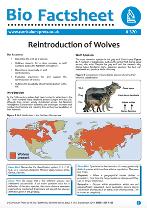 370 Reintroduction of Wolves