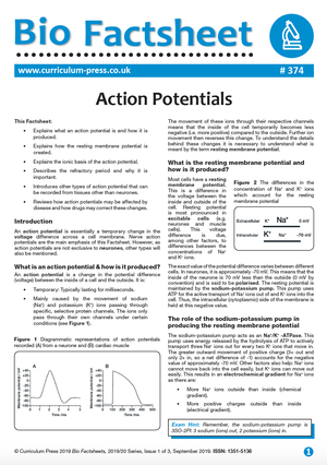 374 Action Potentials