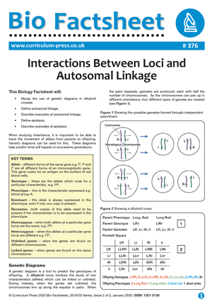 376 Interactions Between Loci and Autosomal Linkage v2