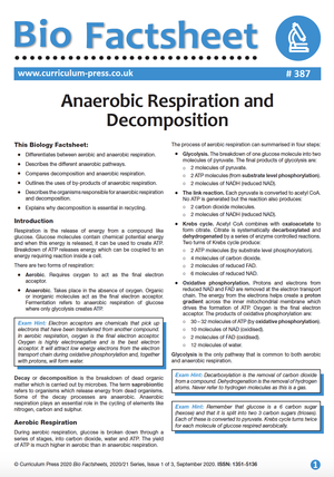 387 Anaerobic Respiration and Decomposition