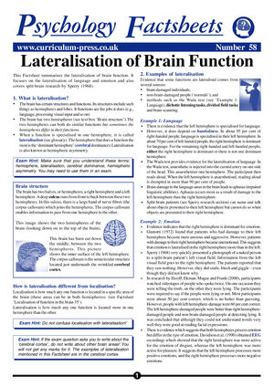 58 Lateralisation Brain