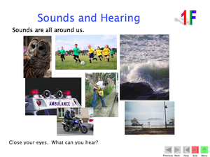 1F Sound And Hearing