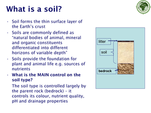 Formation Of Soils